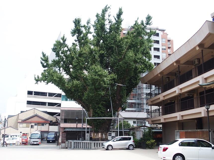 櫛田神社40