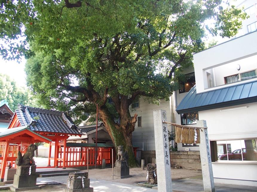 若宮神社8