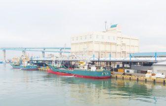 福岡魚市場27