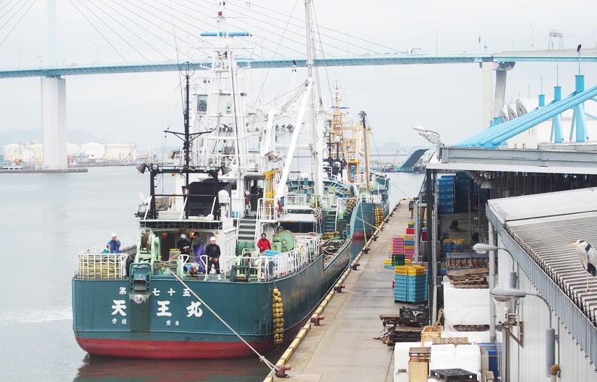 福岡魚市場23