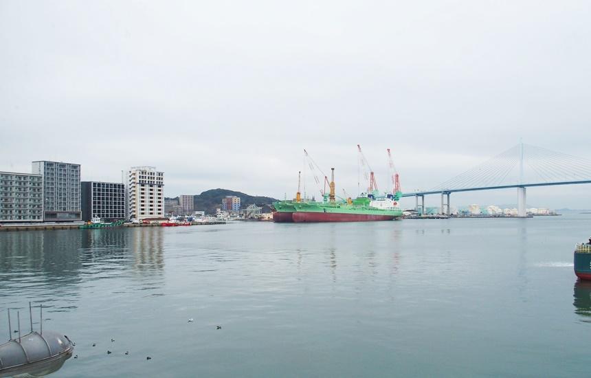 福岡魚市場24