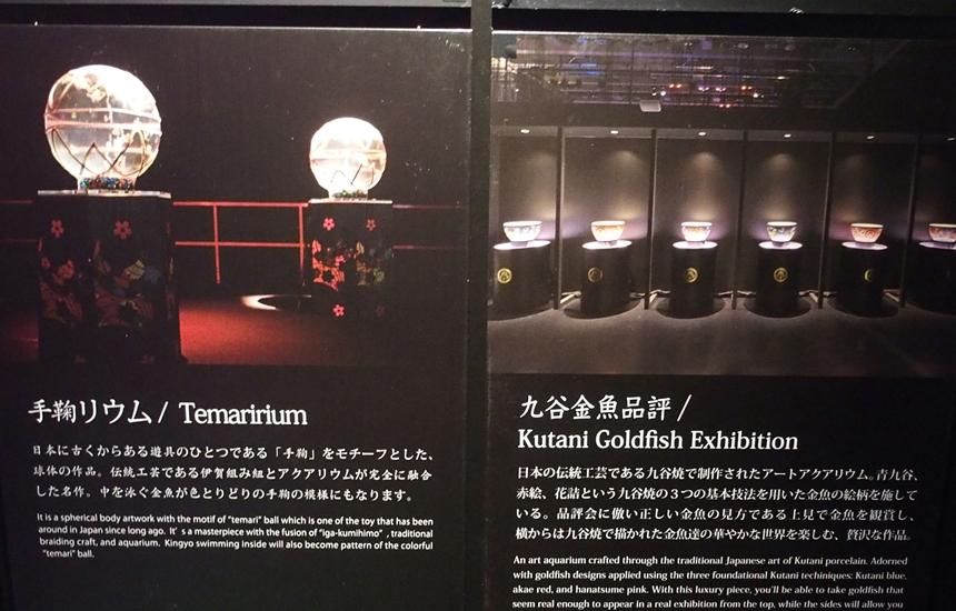アートアクアリウム展201818