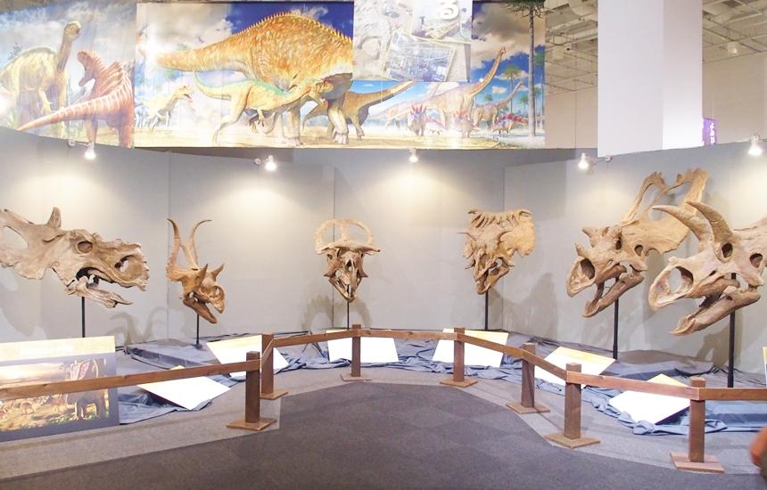 科学館恐竜展7