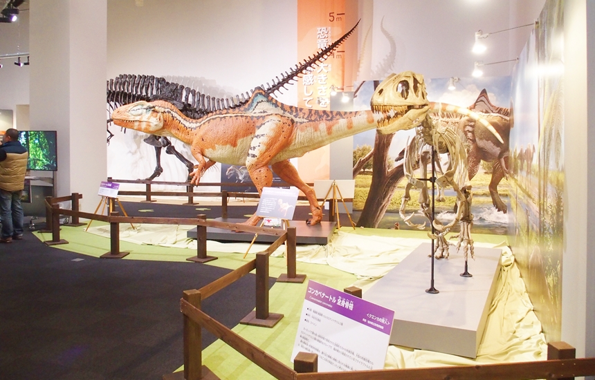 科学館恐竜展18