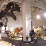 福岡市科学館で開催中の恐竜展に行ってきた!家族で出かけたいイベント