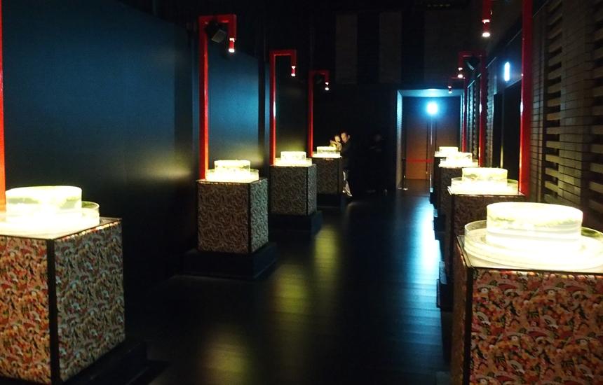アートアクアリウム展20187