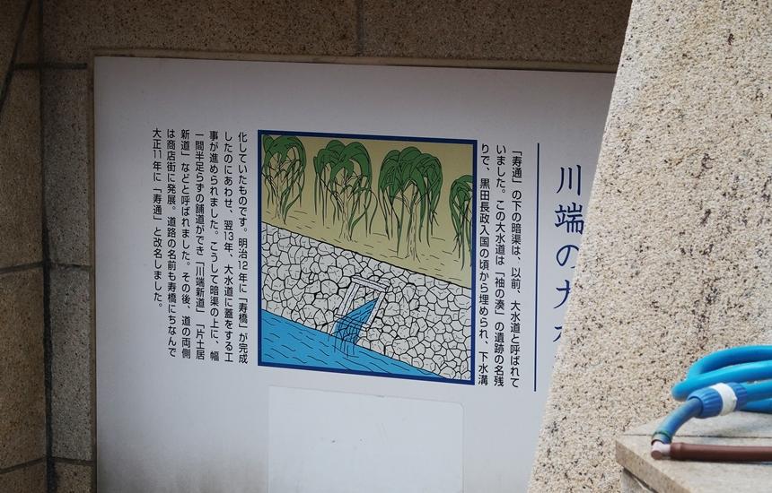 大水道29